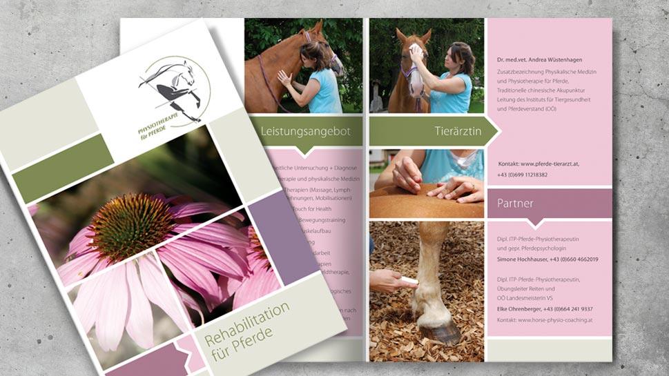 Folder – Rehabilitation für Pferde
